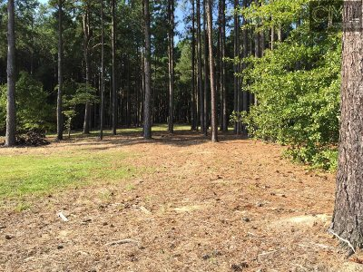 Lexington Residential Lots & Land For Sale: 506 Sunny Cove