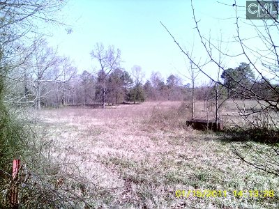 Lexington County Residential Lots & Land For Sale: 1858 Priceville