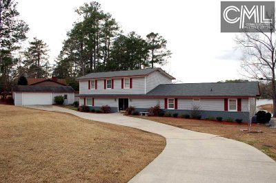 Lexington County, Newberry County, Richland County, Saluda County Single Family Home For Sale: 204 Dutchman Shores