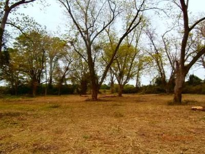 Residential Lots & Land For Sale: Hwy 1