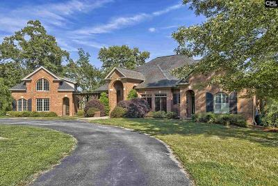 Chapin Single Family Home For Sale: 989 Amicks Ferry