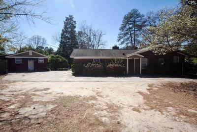 Lexington County, Richland County Single Family Home For Sale: 204 Chippewa