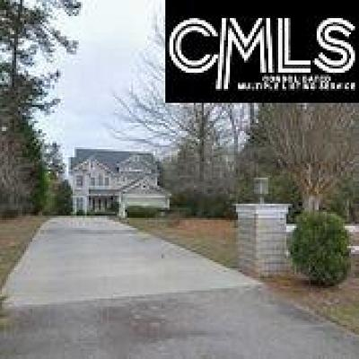 Lexington County, Newberry County, Richland County, Saluda County Single Family Home For Sale: 1101 Ellett