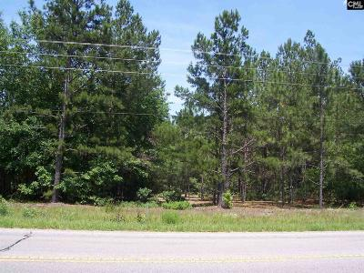 Monetta, Ridge Spring, Wagener, Johnston, Pelion, Newberry, Ward Residential Lots & Land For Sale: Hwy 178