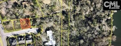 Cayce Residential Lots & Land For Sale: 109 Slann