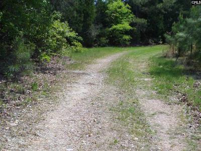 Irmo Residential Lots & Land For Sale: 128 E Jim Koon