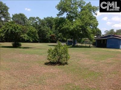 Blythewood, Ridgeway, Winnsboro, Ballentine, Columbia, Eastover, Elgin, Forest Acres, Gadsden, Hopkins Residential Lots & Land For Sale: 204 McNulty