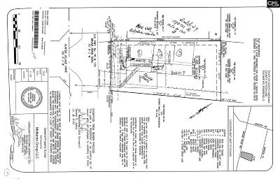 Irmo Residential Lots & Land For Sale: 10070 Broad River