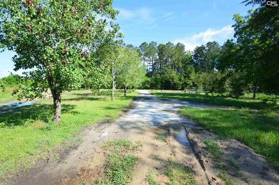 Residential Lots & Land For Sale: 202 & 202a Beaufort
