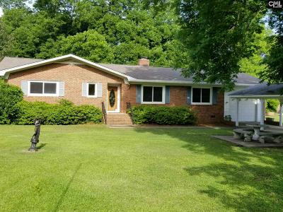 chapin Single Family Home For Sale: 210 E Boundary
