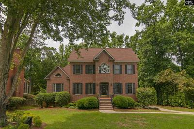 Lexington County, Richland County Single Family Home For Sale: 510 Clearview