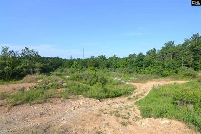 Irmo, Ballentine Residential Lots & Land For Sale: 1050 Howard Coogler