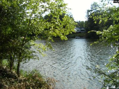 Wateree Hills, Lake Wateree, wateree estates, wateree hills, wateree keys, lake wateree - the woods Residential Lots & Land For Sale: 2984 Lake