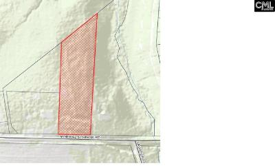 Residential Lots & Land For Sale: 3061 Mineral Springs
