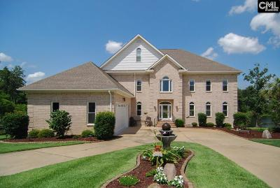 Lexington County Single Family Home For Sale: 424 Lakeshore