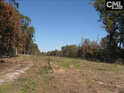 Irmo, Ballentine Residential Lots & Land For Sale: Broad River