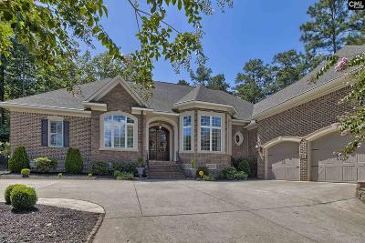 Lexington County, Richland County Single Family Home For Sale: 838 Shore View