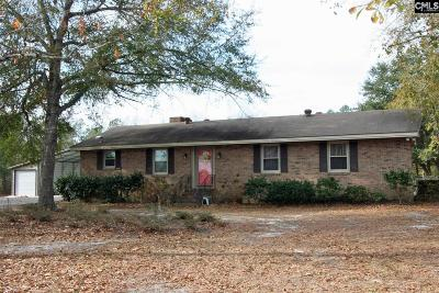 Wagener Single Family Home For Sale: 163 Garvin