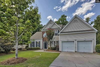 Lexington SC Single Family Home Sold: $237,500 SOLD