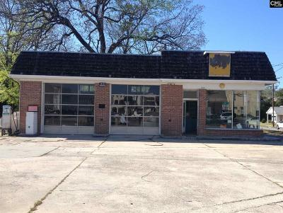 Batesburg, Leesville Commercial For Sale: 525 W Church