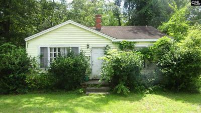 Lexington County, Richland County Single Family Home For Sale: 127 Aiken