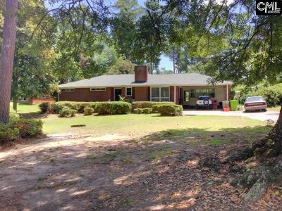 Lexington County, Richland County Single Family Home For Sale: 100 Castle