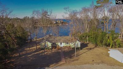 Lexington County, Newberry County, Richland County, Saluda County Single Family Home For Sale: 355 George Sumner