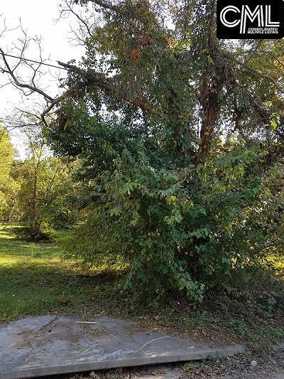 Columbia SC Residential Lots & Land For Sale: $2,500
