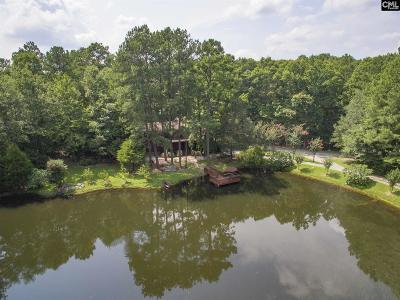 Blythewood Single Family Home For Sale: 1083 Langford