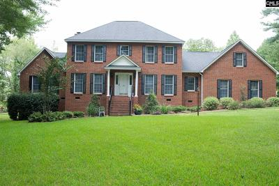 Chapin, Gilbert, Irmo, Lexington, West Columbia Single Family Home For Sale: 299 Big Timber