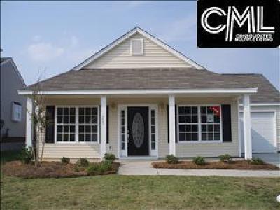 Lexington Single Family Home For Sale: 153 Phoenix