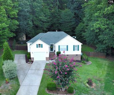 Lexington Single Family Home For Sale: 153 Armanda