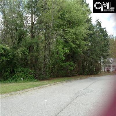 Cayce, Springdale, West Columbia Residential Lots & Land For Sale: 1008 Tarrytown