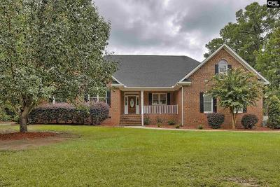Chapin Single Family Home For Sale: 207 Dutchman Shores
