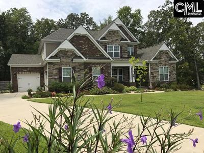 Chapin Single Family Home For Sale: 24 Braveheart