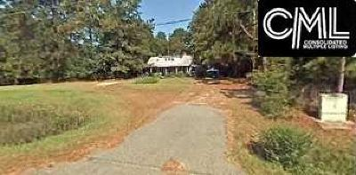 West Columbia Single Family Home For Sale: 4336 Platt Springs