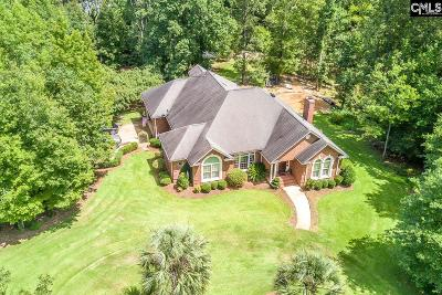 Lexington County, Richland County Single Family Home For Sale: 427 Spring Hill Rd