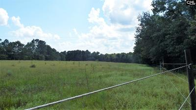 Batesburg, Leesville Residential Lots & Land For Sale: 432-2 Convent Church