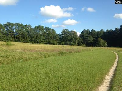 Lexington County Residential Lots & Land For Sale: 432-3 Convent Church