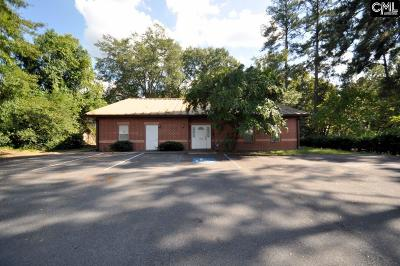 Monetta, Ridge Spring, Wagener, Johnston, Pelion, Newberry, Ward Commercial For Sale: 2220 Harrington