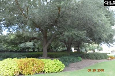 Lexington County, Richland County Residential Lots & Land For Sale: 705 Coriander