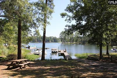 Lexington County, Newberry County, Richland County, Saluda County Single Family Home For Sale: 1205 Holiday Haven Lane