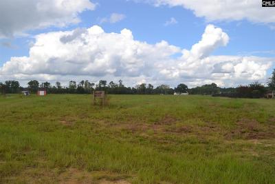 Richland County Residential Lots & Land For Sale: 118 Appleton Corner