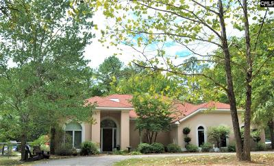 Chapin Single Family Home For Sale: 11447 Broad River