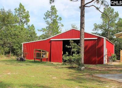 Pelion Residential Lots & Land For Sale: 234 Blanton