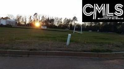 Commercial Lots & Land For Sale: 2840 Dreher Shoals