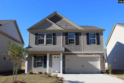 Blythewood Single Family Home For Sale: 343 Fairford #22