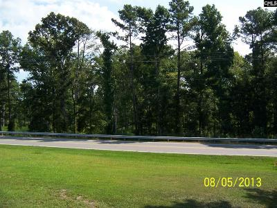 Irmo, Ballentine Residential Lots & Land For Sale: 01 Dreher Shoals