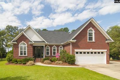 Chapin Single Family Home For Sale: 9 Hawks Ridge