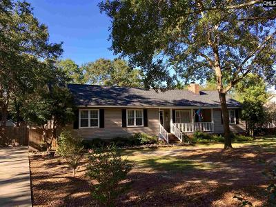Lugoff Single Family Home For Sale: 1138 Spring